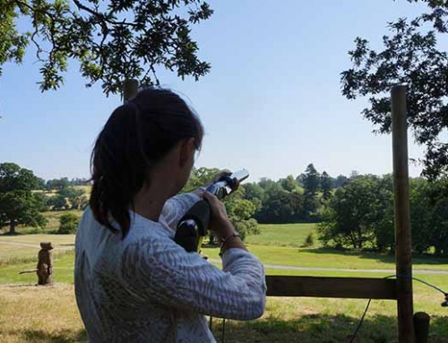 clay shooting exeter devon