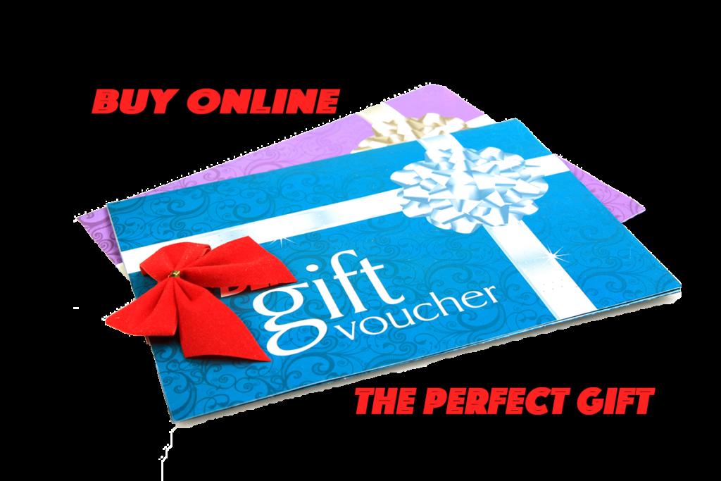 activity gift vouchers Exeter devon